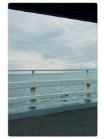 船橋デリヘル 風俗|人妻デリバリーヘルス『秘密倶楽部 凛 船橋店』葵さんの写メ【。。。。】