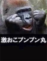 船橋デリヘル 風俗|人妻デリバリーヘルス『秘密倶楽部 凛 船橋店』海さんの写メ【訂正!】