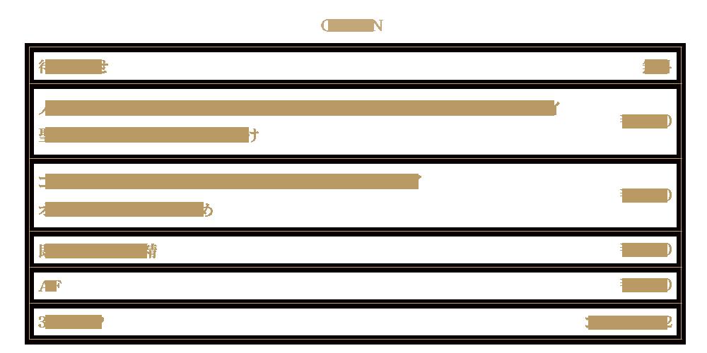 千葉風俗『秘密倶楽部 凛 千葉店』FIRST STAGEオプション料金