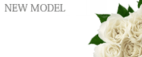 船橋デリヘル 風俗|人妻デリバリーヘルス『秘密倶楽部 凛 船橋店』期待の新人ランキング【NEW】