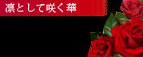 船橋デリヘル 風俗|人妻デリバリーヘルス『秘密倶楽部 凛 船橋店』5月度<1st月間総合>ランキング【凜として咲く華】