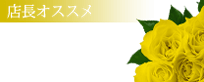 船橋デリヘル 風俗|人妻デリバリーヘルス『秘密倶楽部 凛 船橋店』このみ【店長オススメ】