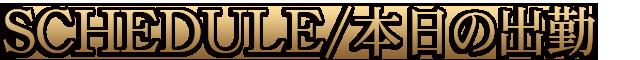 千葉風俗『秘密倶楽部 凛 千葉店』【FIRST STAGE】出勤情報